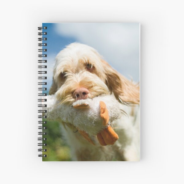 Brought you a duck Spinone Spiral Notebook