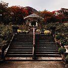 Gora Park - Hakone, Japan by IkuTree