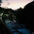 Hakone at Night - Hakone, Japan by IkuTree
