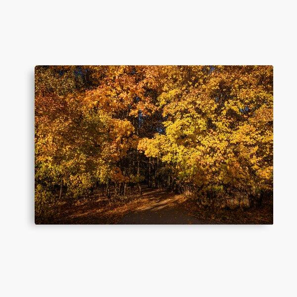 Mind-Blowing Autumn Canvas Print