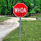 Country Folks Stop Sign! by RickDavis