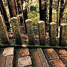 Inside Kibune/Kurama Mountains - Kyoto, Japan by IkuTree