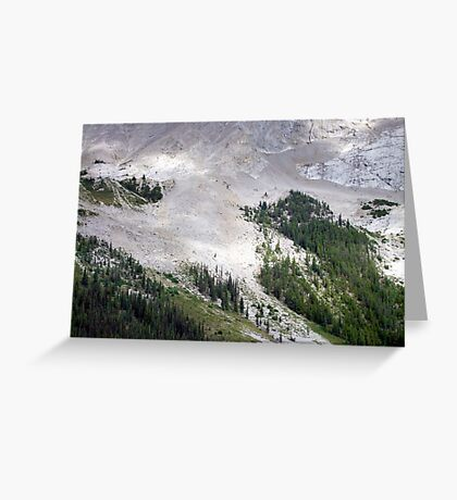 Forest Foothold Greeting Card