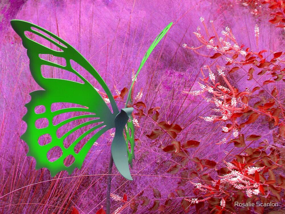 Green Butterfly by Rosalie Scanlon