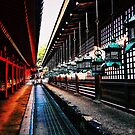 Kasuga-Taisha Lanterns - Nara, Japan by IkuTree