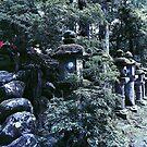 Kasuga-Taisha Stone Lantern - Nara, Japan by IkuTree