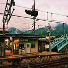Okunoshima 'Rabbit Island' Station - Okunoshima, Japan by IkuTree