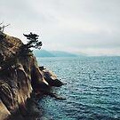 Okunoshima 'Rabbit Island' - Okunoshima, Japan by IkuTree