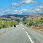 Long Road Ahead by AnnDixon