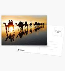 Camel Silhouette Postcards