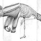 Cadavre Exquis by Julia Keil