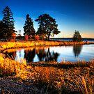 Harmonic Bay at Nature Reserve by Demoshane