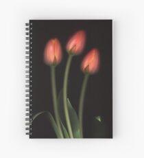 Ad Rem Spiral Notebook