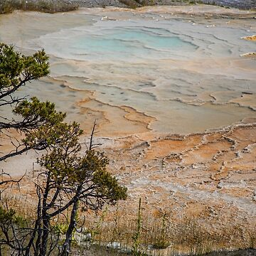 USA. Wyoming. Yellowstone National Park. Pool. by vadim19
