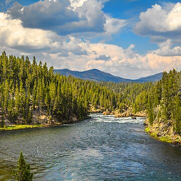 USA. Wyoming. Yellowstone National Park. River. by vadim19
