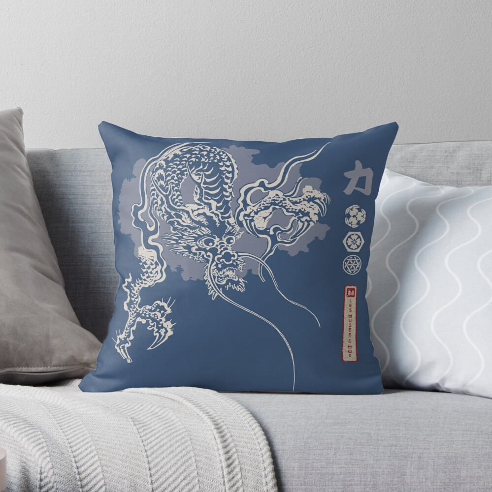 Coussin «Dragon Power»