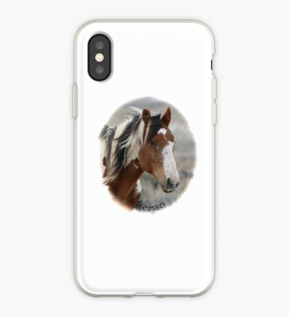 Picasso of Sand Wash Basin iPhone Case