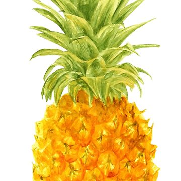 Pineapple. watercolor by lisenok
