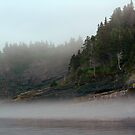 Foggy Morning by DebYoung