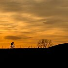 Cyclist Silhouette in the Sunset by Jan Emery