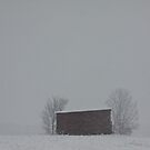 Lonely Red Barn by NervousNellie