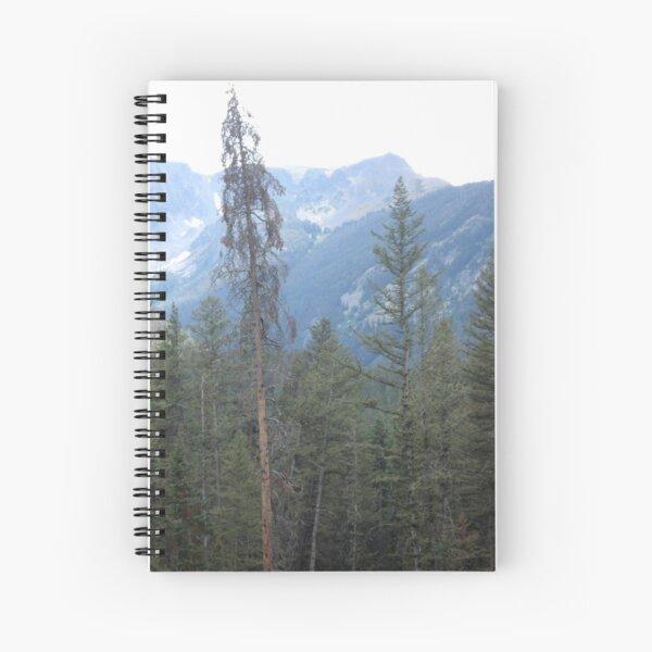 Lodgepole Pine Spiral Notebook