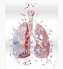 Lungs, lungs anatomy, medical art, watercolor lungs,  abstract lungs Poster