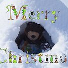 Merry Christmas bear in an igloo by Dean Harkness