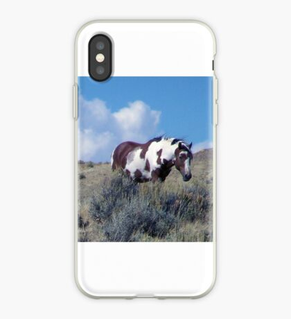Picasso, the Icon of Sand Wash Basin iPhone Case