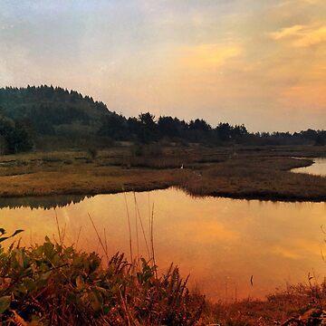Sitka Sedge Fall Sunset by Pagani