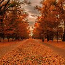 Liberty Park Autumn, Salt Lake City by Len Bomba