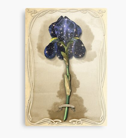 Night Iris Metal Print