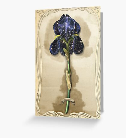 Night Iris Greeting Card