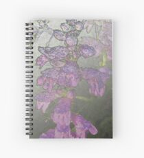 Penstemons with Morning Dew - Silver Haze Spiral Notebook