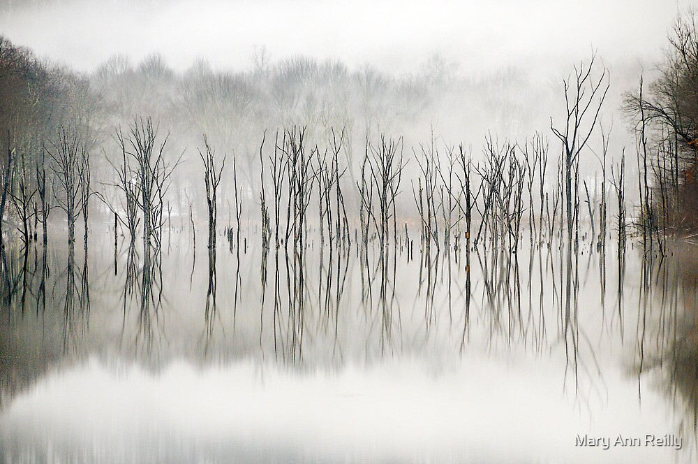 Winter Trees by Mary Ann Reilly