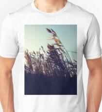 #plant #grassfamily #nature #tree #landscape #outdoors #wood #leaf #sky #horizontal #colorimage #branchplantpart #nopeople #day #lightnaturalphenomenon #colors #sun #sunny #nonurbanscene Unisex T-Shirt