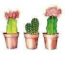Succulent Cactus Trio Watercolor Painting by Jasanna Czellar