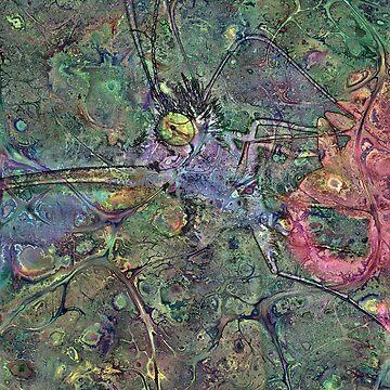 Lepidoptera 3 by RichardMaier