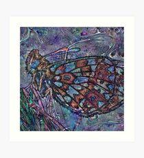 Lepidoptera 4 Art Print