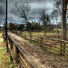 Wooden Bridge with Lamp Post by Terence Russell