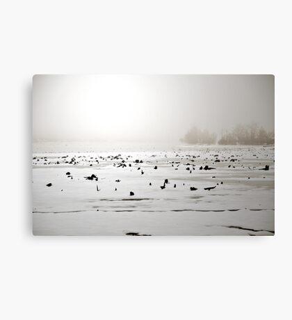 Whitelight Canvas Print