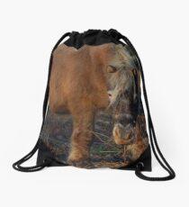 Winter Pony Drawstring Bag