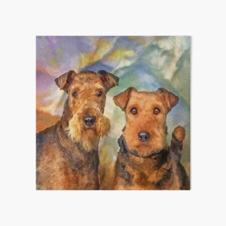 Airedale Terriers Portrait Mixed Media  Art Board Print