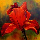 Red Iris by sesillie