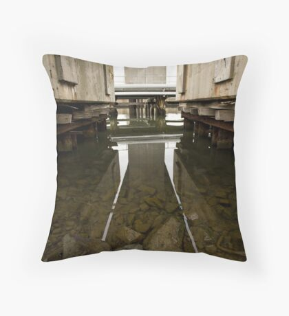 Reflections 4543 Throw Pillow