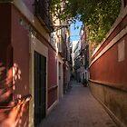 Gallivanting Around Seville is Pure Charm - Calle Pimienta Red Facades by Georgia Mizuleva