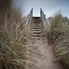 steps to the skies by codaimages