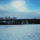 Essex Winter Fields by J J  Everson