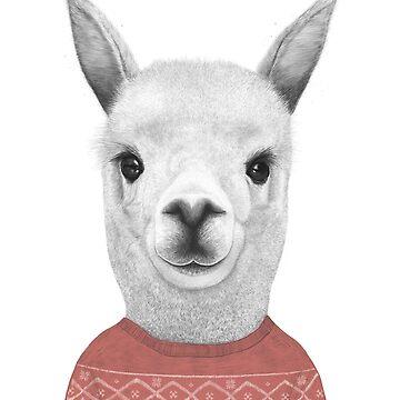 Lama in a sweater by kodamorkovkart
