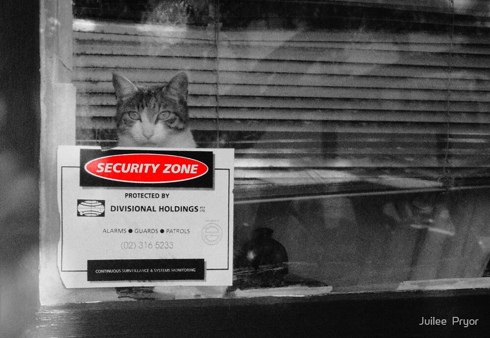 security zone by Juilee  Pryor